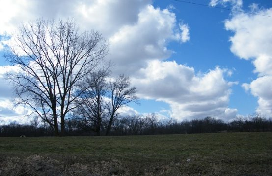 2, 3 acre lots in Jefferson Township!